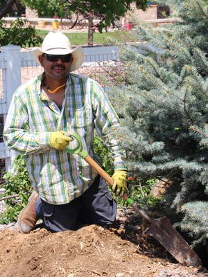 Donovan Arborists perform tree planting service in Denver, CO